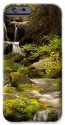 Mossy Falls 1 IPhone 6s Case