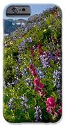 Mountain Meadow IPhone 6s Case by Cole Black