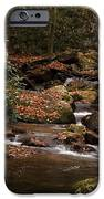 Mountain Stream IPhone 6s Case by Cindy Rubin