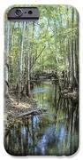 Natural Bridge Springs IPhone 6s Case