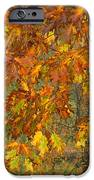 October Watercolors_1 IPhone 6s Case by Halyna  Yarova