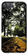 Old Road IPhone 6s Case