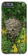 Paper Hornet Nest IPhone 6s Case