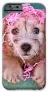 Party Animal IPhone 6s Case by Brenda Schwartz