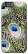 Peacock Feathers IPhone 6s Case