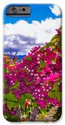 Pink Bush IPhone 6s Case by Lisa Cortez