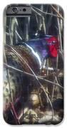 Pleasant Pheasant II IPhone 6s Case