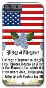 Pledge Of Allegiance IPhone 6s Case by Anne Norskog