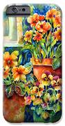 Potted Pansies II IPhone 6s Case by Ann  Nicholson