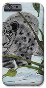 Preying In The Snow IPhone 6s Case by Carol Hamby