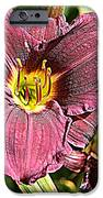 Purple IPhone 6s Case by Debbie Sikes