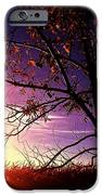 Purple Skies And Walnut Trees IPhone 6s Case