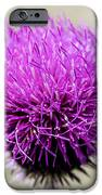 Purple  IPhone 6s Case