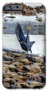 Raven Departs IPhone 6s Case