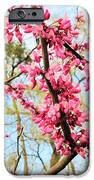Redbud Buds IPhone 6s Case