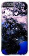 Reflection Pool IPhone 6s Case by Garren Zanker