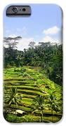 Rice Terrace In Bali IPhone 6s Case by Lars Ruecker
