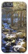 River From The Bridge IPhone 6s Case