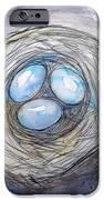 Robin Blue Nest IPhone 6s Case by M C Sturman
