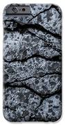 Rocks IPhone 6s Case by Grebo Gray