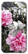 Rose Of Sharon-vintage Warmth IPhone 6s Case