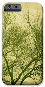 Serene Green 2 IPhone Case by Wendy J St Christopher