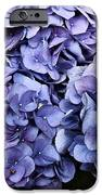 Shades Of Blue IPhone 6s Case by Tanya Jacobson-Smith