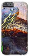 Sleeping Turtle IPhone 6s Case by Annette Allman