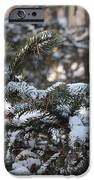 Snow Covered Branches IPhone 6s Case by Brett Geyer