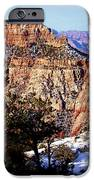Snowy Grand Canyon Vista IPhone 6s Case by Janice Sakry