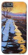 Soft Reflections At Sunset IPhone 6s Case by Susan McCullough