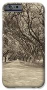 Southern Journey Sepia IPhone Case by Steve Harrington