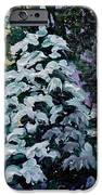 Southern Surprise IPhone 6s Case by Vickie Warner
