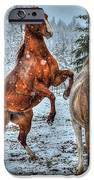 Standing In The Snow IPhone 6s Case by Skye Ryan-Evans