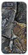 Structural Stone Surface IPhone Case by Heiko Koehrer-Wagner