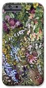 Summer Prairie I IPhone 6s Case by Helen Klebesadel