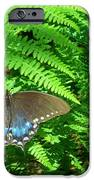 Sunbathing Butterfly IPhone 6s Case