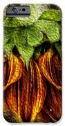 Sunflower IPhone 6s Case by John Monteath