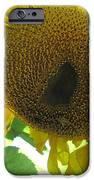 Sunflowers Bee Alaska IPhone 6s Case by Elizabeth Stedman