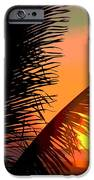 Sunlight - Ile De La Reunion - Reunion Island IPhone 6s Case by Francoise Leandre