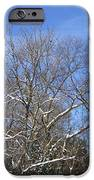 Sunny Winter Sky IPhone 6s Case by Good Taste Art