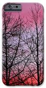 sunset in late February IPhone 6s Case by John Magnet Bell