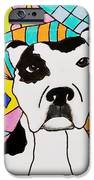 Sweet Spot Pit IPhone 6s Case by Carol Hamby