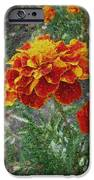 The Color Of Fire IPhone 6s Case by Lewanda Laboy