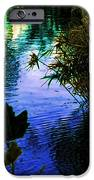 The Pond At Dusk IPhone 6s Case