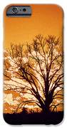 The Promise Of A New Day IPhone 6s Case by Jinx Farmer