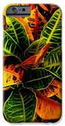 The Tropical Croton IPhone 6s Case