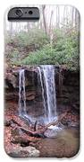 The Waterfall IPhone 6s Case by Diane Mitchell