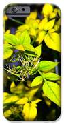 The Yellow Plant IPhone 6s Case