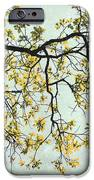 The Yellow Tree IPhone 6s Case by Sharon Coty